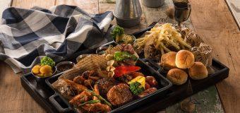 Migliori barbecue elettrici professionali